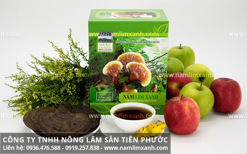 Uống nấm lim xanh kiêng gì và cách dùng nấm lim rừng cần chú ý gì?