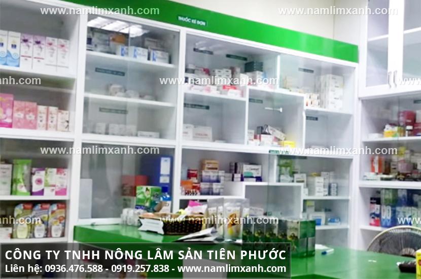 Nấm lim xanh Tiên Phước được bán tại nhiều nhà thuốc uy tín ở Hà Nội