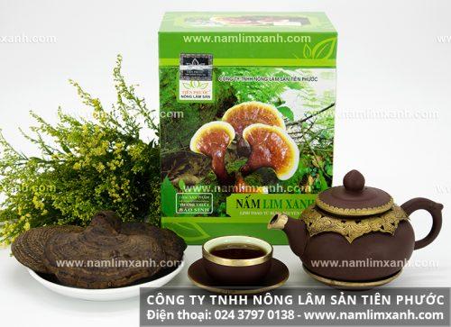 Giá nấm lim rừng loại Thanh Thiết Bảo Sinh được niêm yết toàn quốc